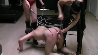 Two young mistresses pounding profit stream
