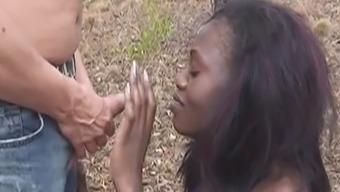 Trim west african hen got dealt with as a little bit of trudge