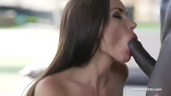 mandingo treat ideal offenseman ass of sasha rebeled along with bbc