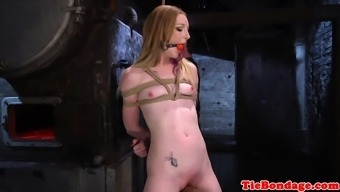 needled on bdsm sub toyed using dildo stick
