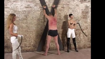 Man whipping with singletail snakewhip
