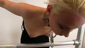 Major sentence for black sex machine on milking system