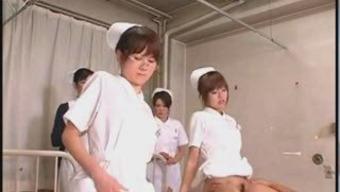 Japanese people Apprentice Registered nurses Proper training and Perform