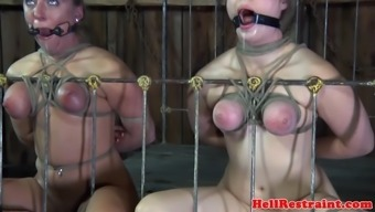 Restricted entrance gagged subs toyed in trio