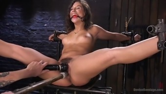 fucked over weirdo immobilizes succulent abella risk and anguish her furry cunt