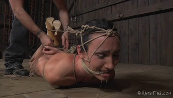 Shout as bondage missy pussy is mocked using toys in BDSM